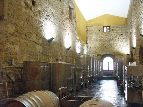 que ver en ronda bodegas ruta del vino
