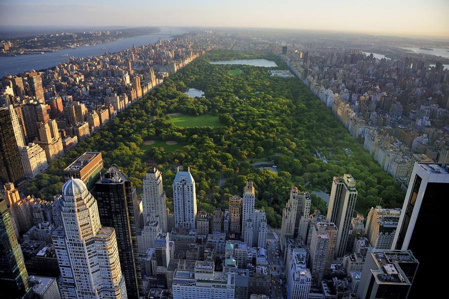 que ver en nueva york en 9 dias centrsl park