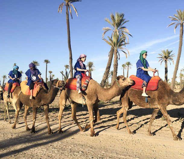 que ver en marrakech callejeros viajeros