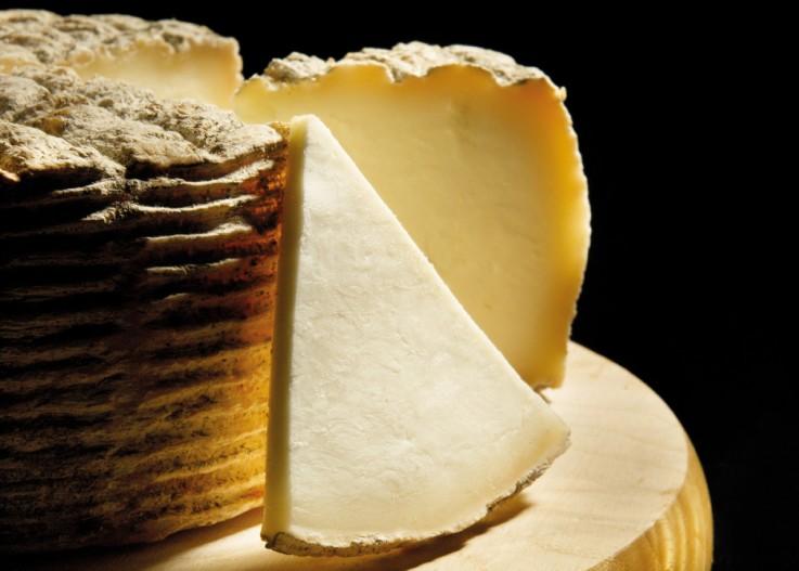 que ver en logroño la rioja queso camerano