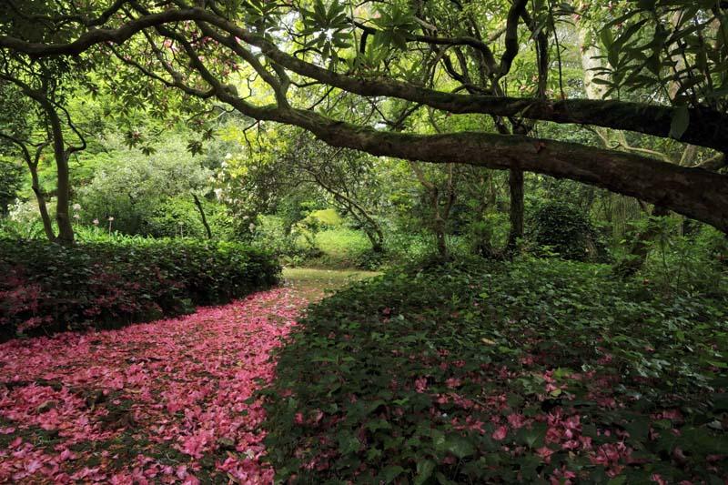 que ver en sintra portugal jardines parque da pena