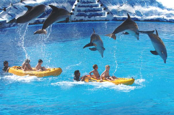 que ver en alicante con niños mundo mar