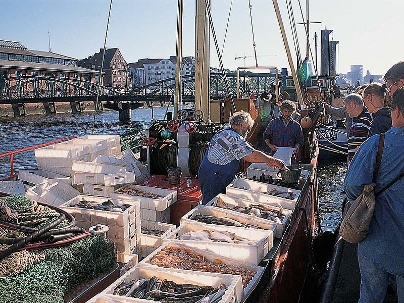 que ver en hamburgo alemania Fischmarkt