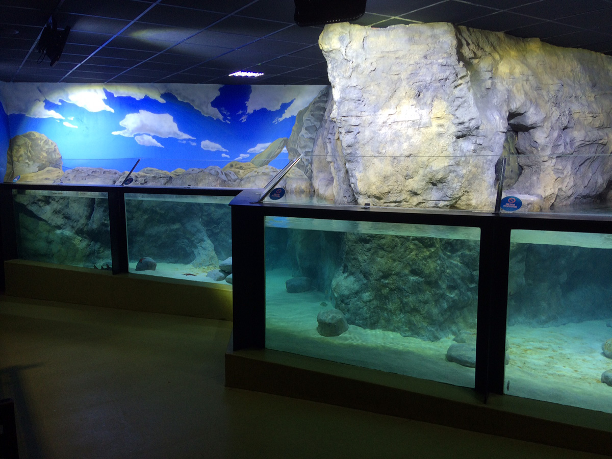 El Aquarium du Grand Lyon