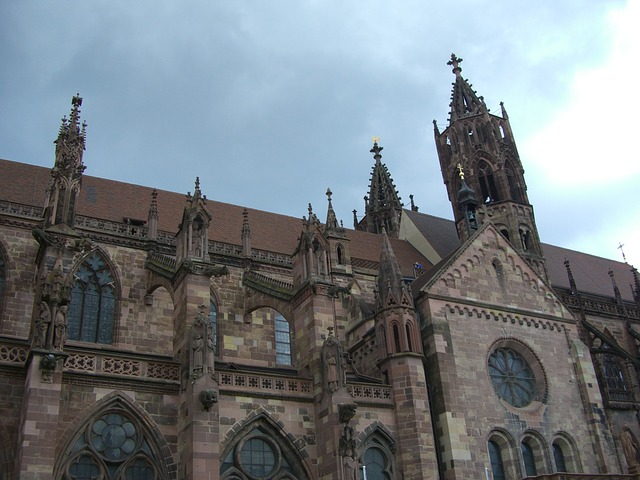 que ver en la selva negra friburgo catedral