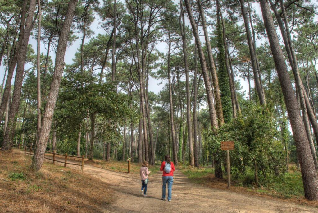 sitios turisticos en o grove